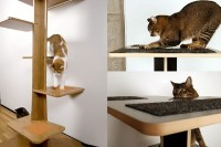 Spoil Your Lovely Cats with Contemporary Cat Furniture ...
