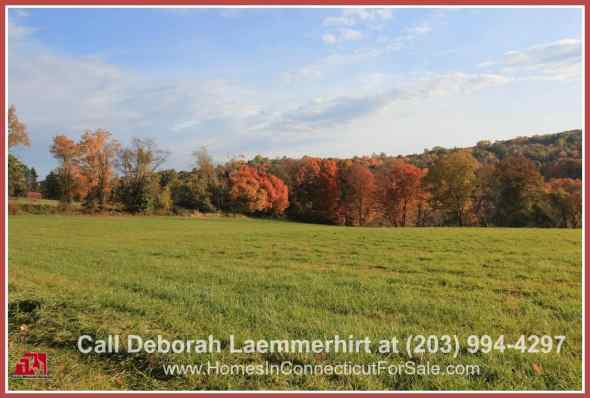 If you're looking for a relaxing, wide-spaced land where you can build your dream luxury home, or even a whole subdivision, then this Bridgewater CT horse property for sale is THE one!