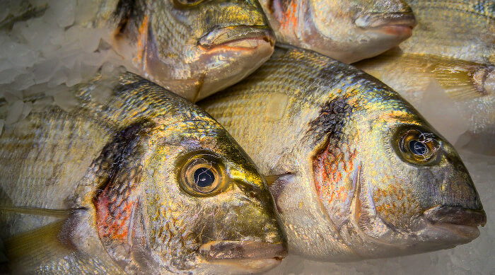 Renters wont miss smelly fish. Things renters won't miss after buying a home.