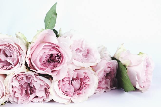 cięte kwiaty