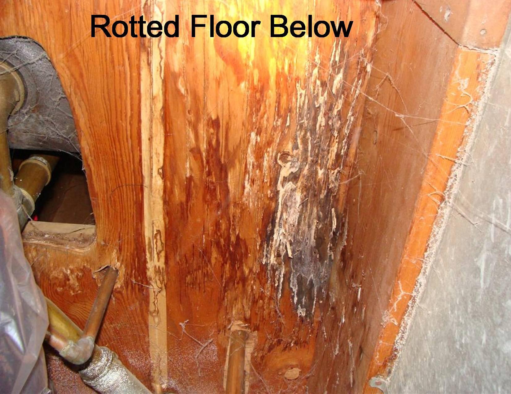 Finding Shower Leaks HomesMSP