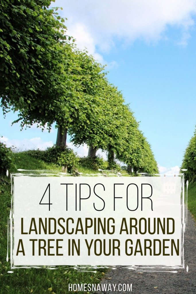 4 Tips For Landscaping Around A Tree In Your Garden