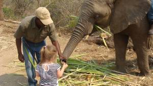 Elephant Whispers kids south africa