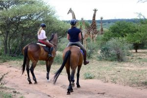 Horse Riding South Africa