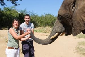 Elephant Ride South Africa - Elephant Whispers
