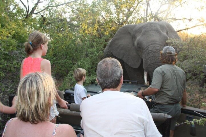 Safari South Africa with children