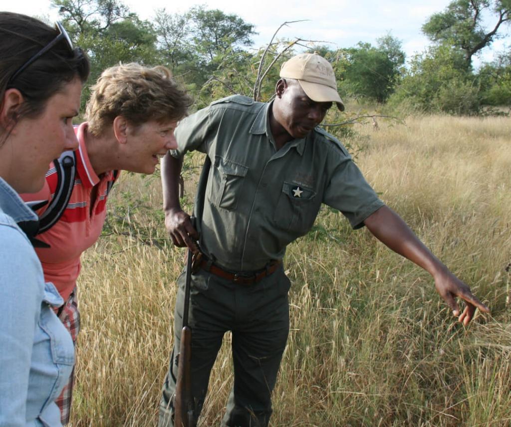Wandelsafari in Krugerpark - Zuid Afrika