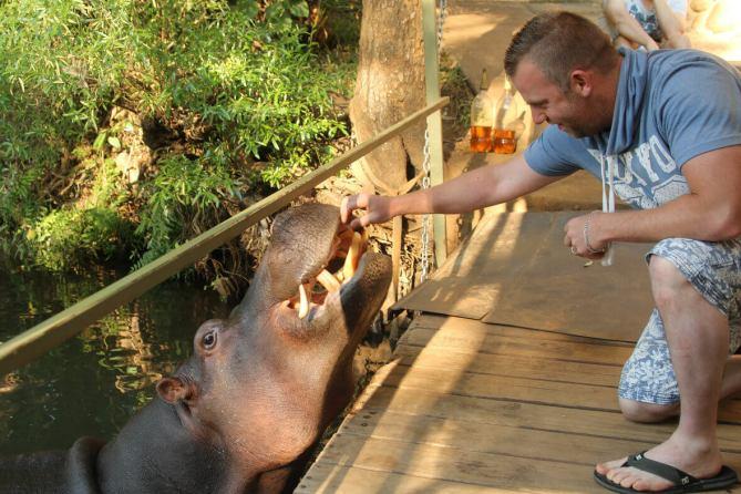 jessica-the-hippo-zuid-afrika