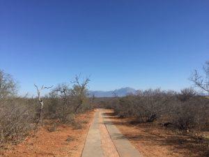 Hardlopen Zuid Afrika