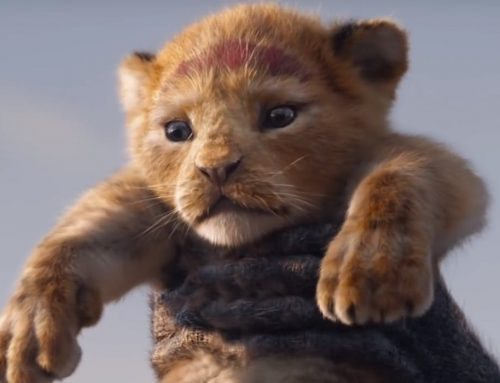 Disney's The Lion King 2019 trailer – a must see!