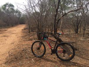 Mountainbiken met de wilde dieren om je heen, een onvergetelijke ervaring. Beleef de prachtige Zuid-Afrikaanse natuur van Zandspruit Estate vanaf de fiets. Of kies voor een georganiseerde mountainbike route in big 5 gebied.
