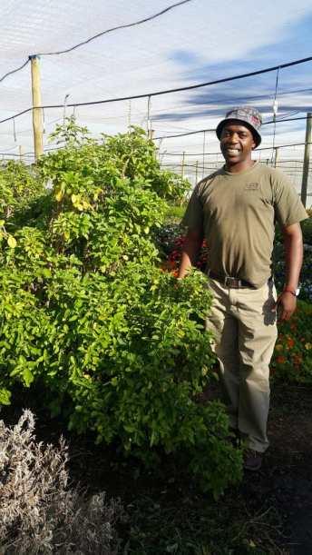 Hlokomela - Herb Garden
