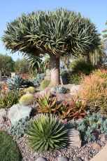 Beautiful front yard rock garden landscaping ideas (30)