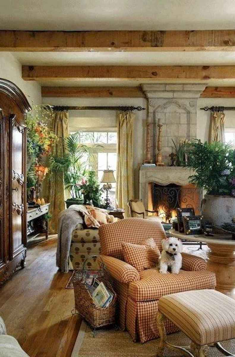 Fancy french country living room decorating ideas (6)