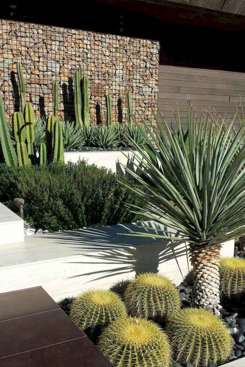 Simple clean modern front yard landscaping ideas (27)