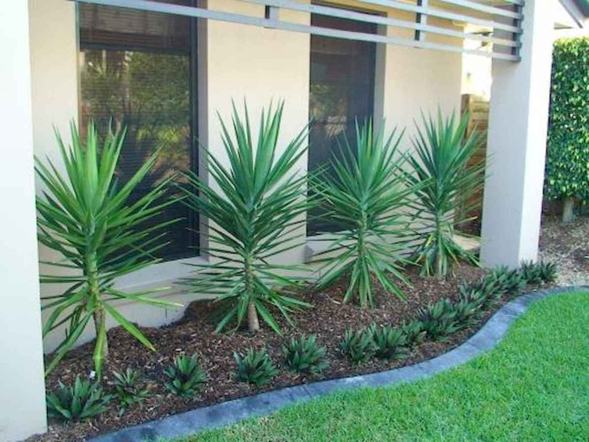 Simple clean modern front yard landscaping ideas (33)