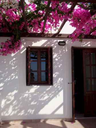 Diy shade canopy ideas for patio & backyard decoration (11)