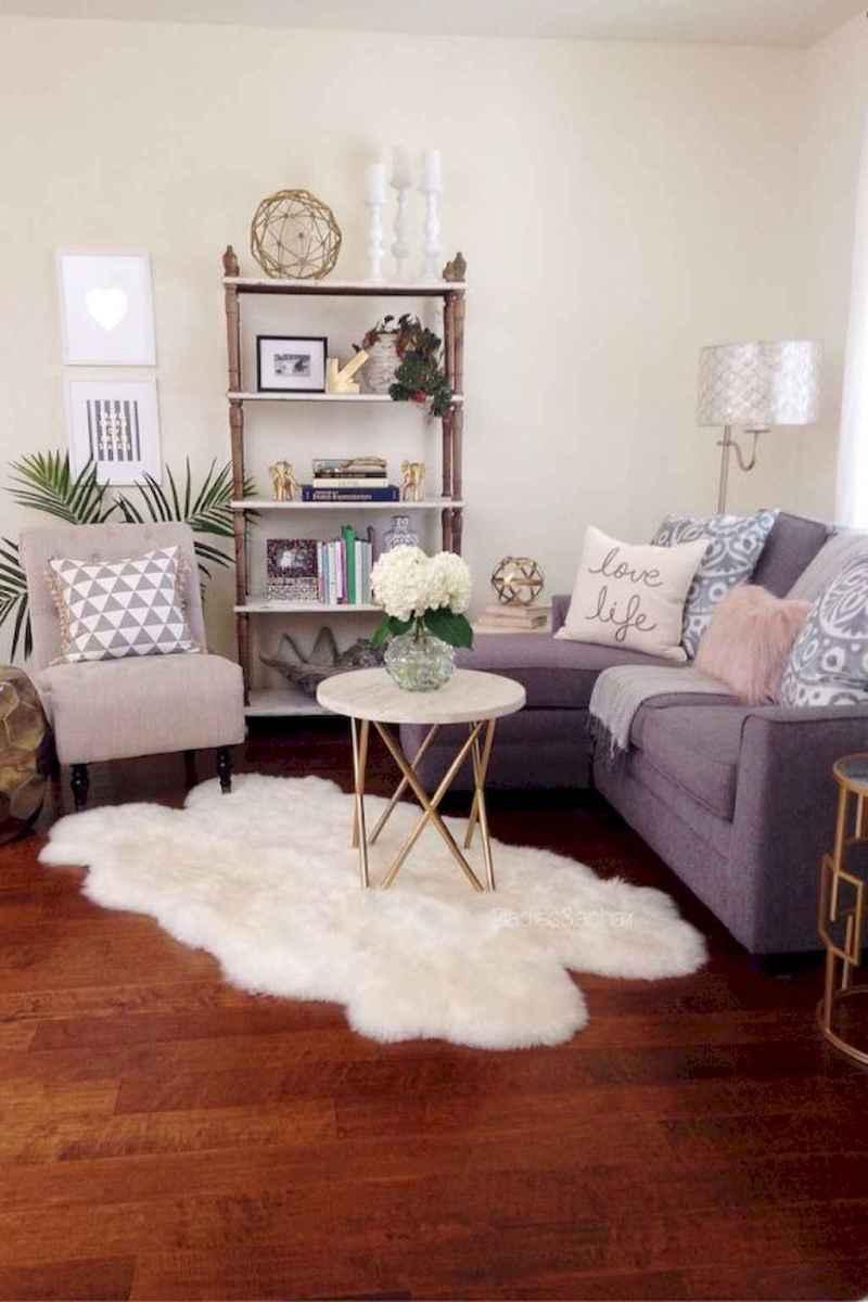 Diy rental apartment decorating ideas (23)