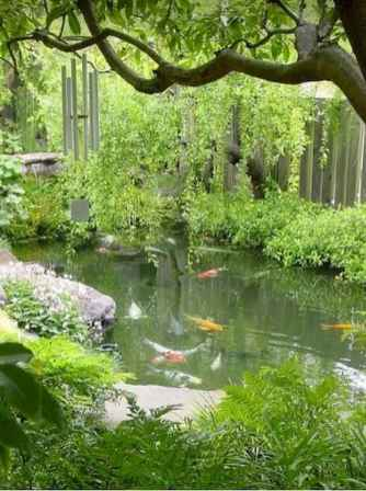 10 awesome backyard ponds and water garden landscaping ideas