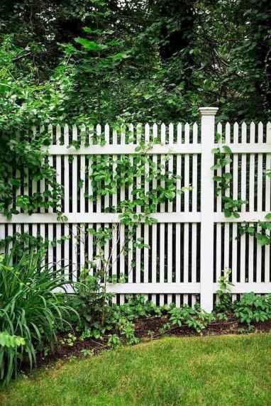 33 easy cheap backyard privacy fence design ideas