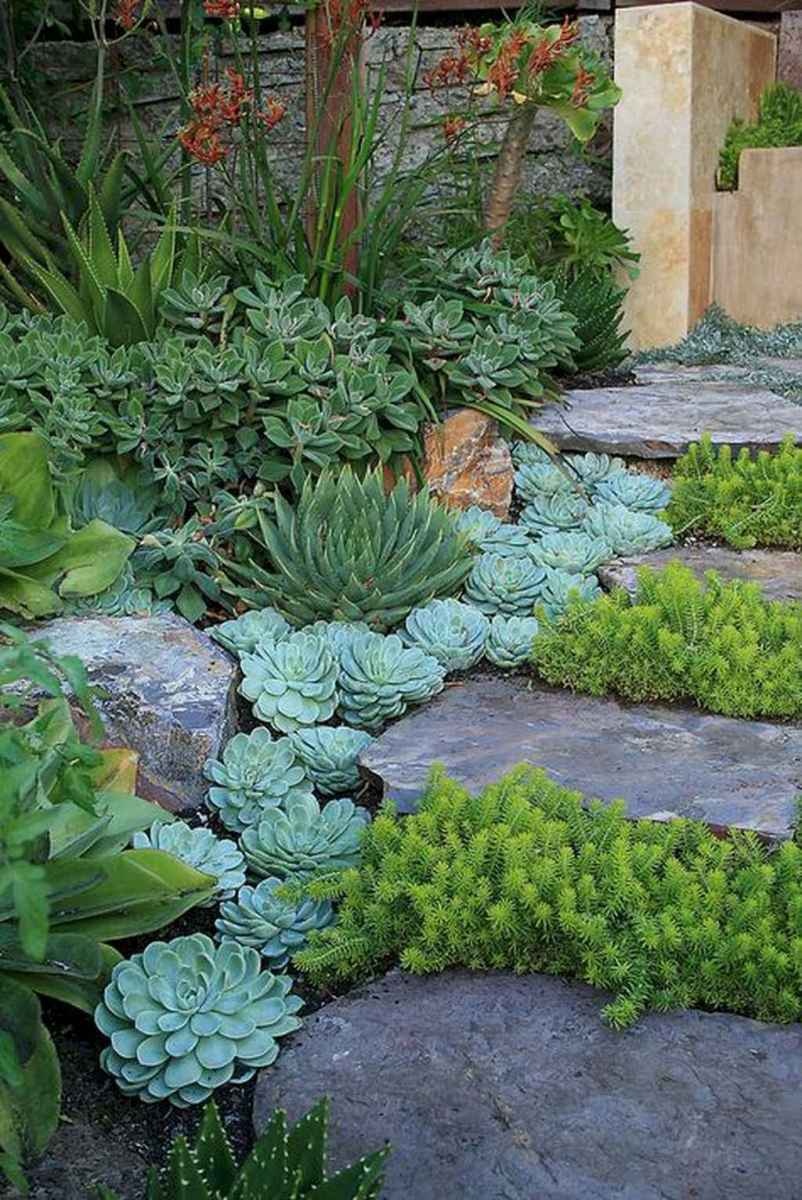 35 simple and beautiful front yard pathways landscaping ideas