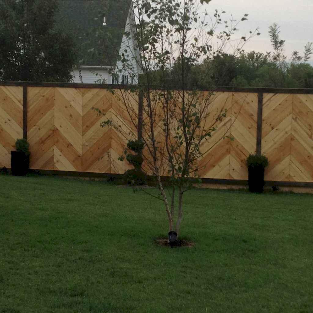 43 easy cheap backyard privacy fence design ideas