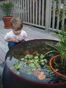 62 awesome backyard ponds and water garden landscaping ideas