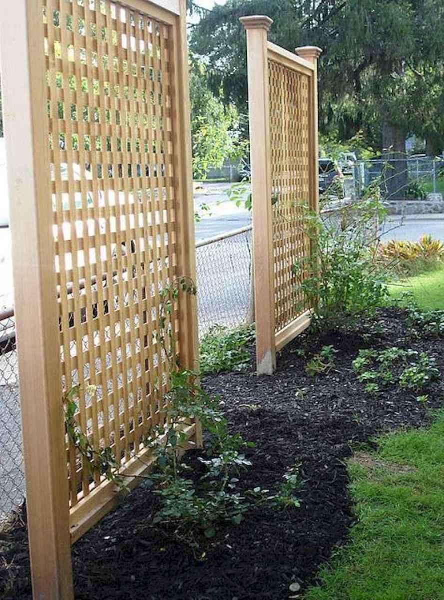 66 easy cheap backyard privacy fence design ideas