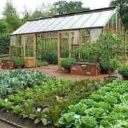 01 affordable backyard vegetable garden design ideas