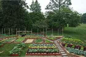 06 affordable backyard vegetable garden design ideas