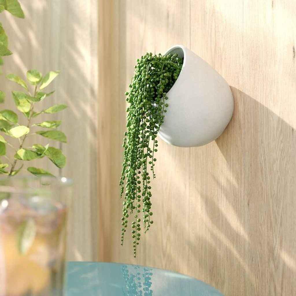 07 stunning vertical garden for wall decor ideas
