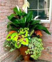 09 fabulous summer container garden flowers ideas