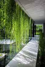 14 stunning vertical garden for wall decor ideas