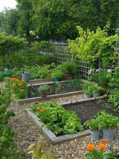 21 affordable backyard vegetable garden design ideas