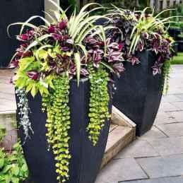 21 fabulous summer container garden flowers ideas