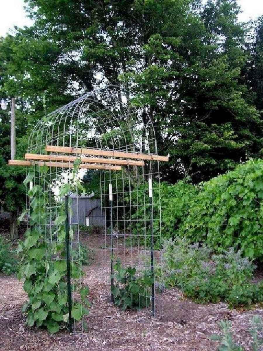 26 amazing diy vertical garden design ideas