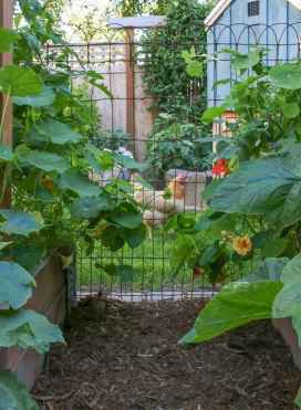 27 affordable backyard vegetable garden design ideas