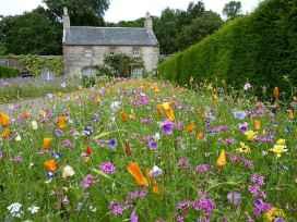 33 beautiful cottage garden ideas to create perfect spot