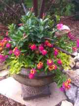 34 fabulous summer container garden flowers ideas