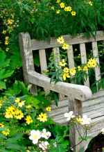 38 beautiful cottage garden ideas to create perfect spot