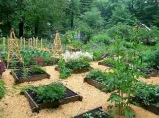 47 affordable backyard vegetable garden design ideas