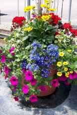 48 fabulous summer container garden flowers ideas