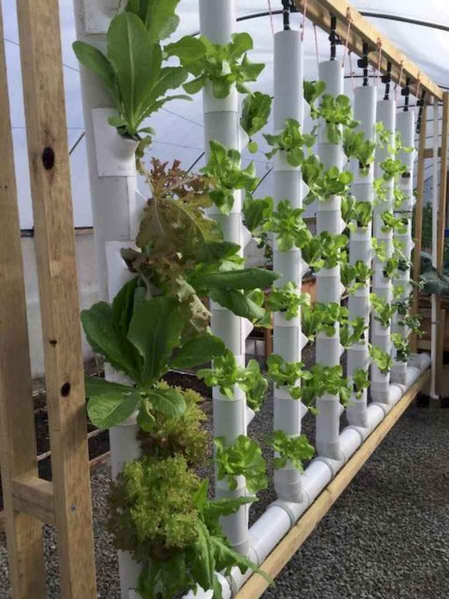 48 fantastic vertical garden indoor decor ideas