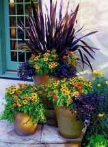 51 fabulous summer container garden flowers ideas