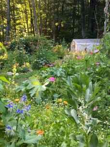 62 beautiful cottage garden ideas to create perfect spot