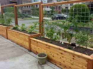67 affordable backyard vegetable garden design ideas