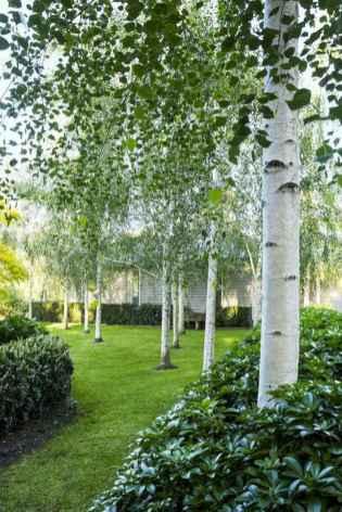 67 stunning front yard cottage garden inspiration ideas