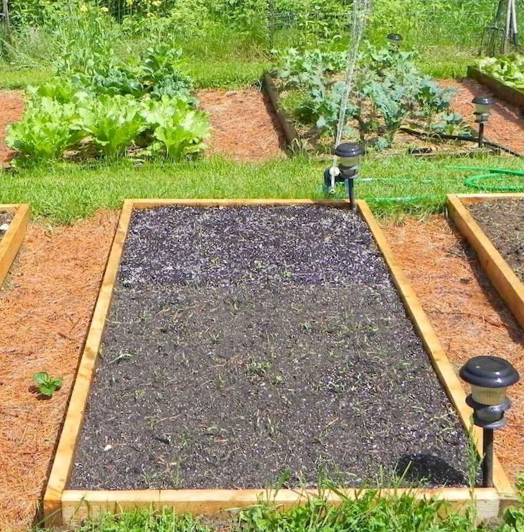 70 Affordable Backyard Vegetable Garden Design Ideas Homespecially