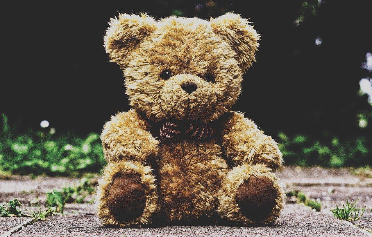 teddy bear, stuffed animal, teddy-3599680.jpg