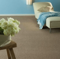 Selling your house and need new carpets? You've come to ...